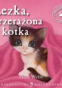 Łezka, przerażona kotka. Zaopiekuj się mną - Webb Holly