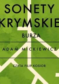 Sonety krymskie. Burza - Mickiewicz Adam