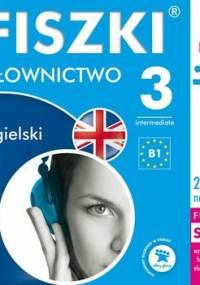 Fiszki audio. Język angielski. Słownictwo 3 - Wojsyk Patrycja