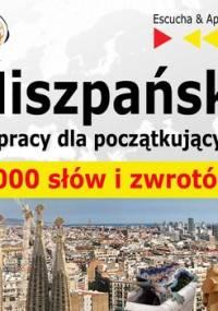 Hiszpański w pracy dla początkujących. 1000 słów i zwrotów - Guzik Dorota