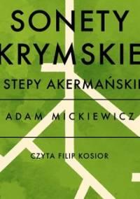 Sonety krymskie - Stepy Akermańskie - Mickiewicz Adam