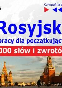 Rosyjski w pracy dla początkujących. 1000 słów i zwrotów w pracy za granicą - Guzik Dorota